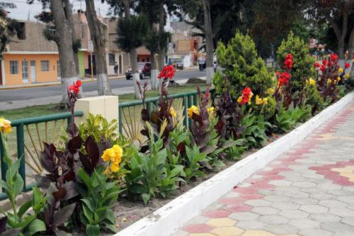 Flowers in El Paseo de las Musas in Chiclayo, Peru.