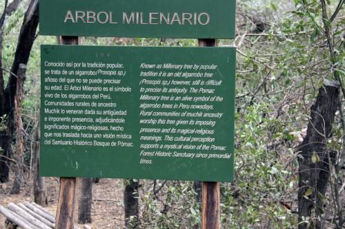 Arbol Milenario Sign at the Bosque de Pómac
