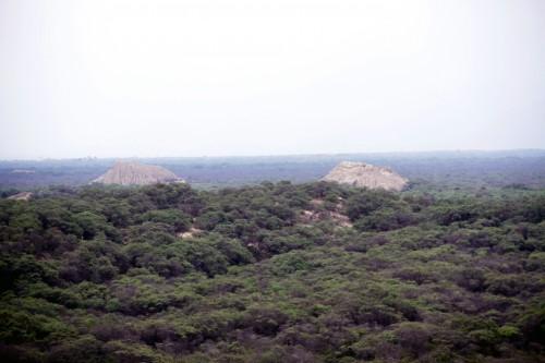 Bosque de Pómac Pyramids