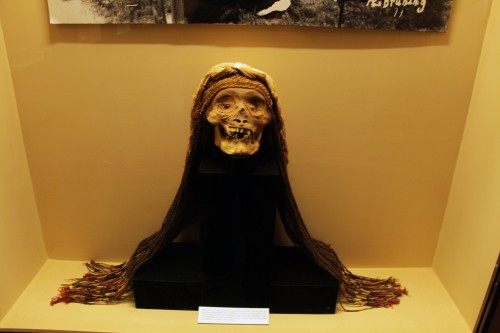 skull at the Museo Arqueológico Brüning